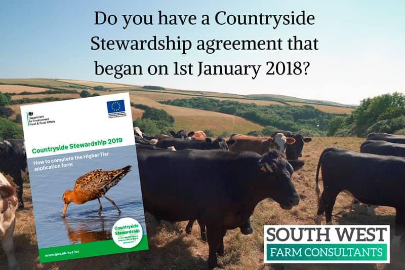Countryside Stewardship delays