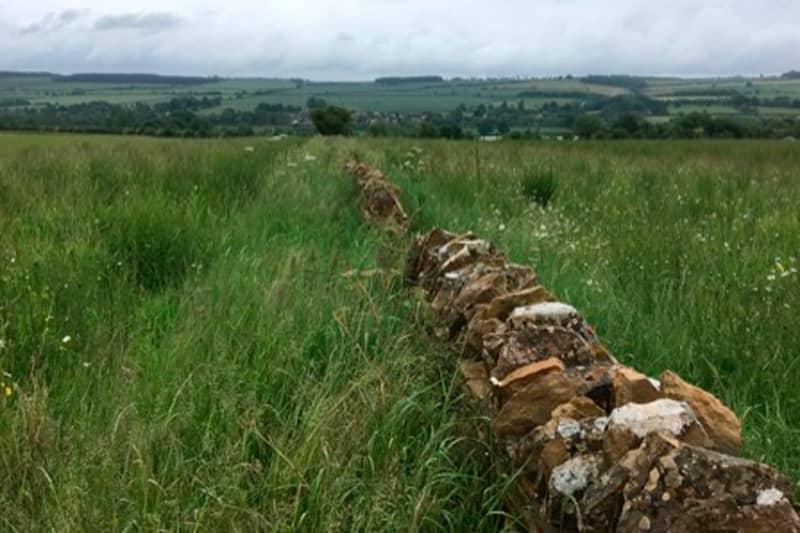 FarmEd stone walls