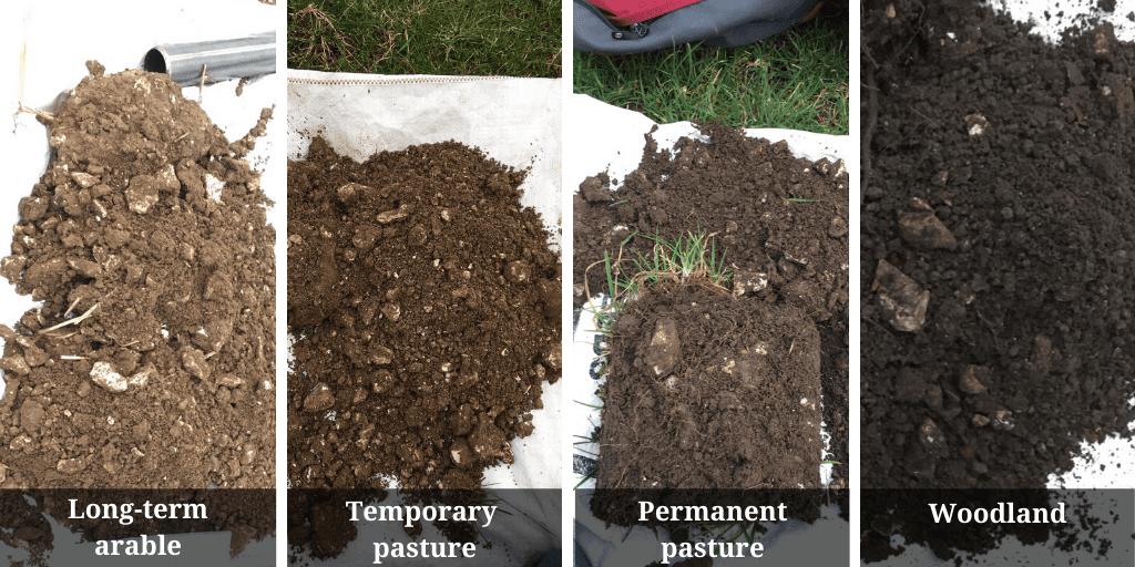 Soil samples (TWITTER)