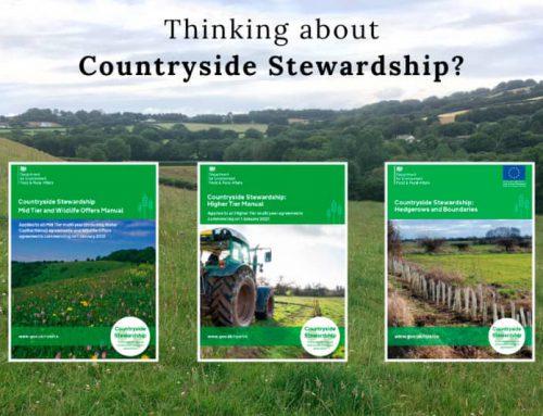 Countryside Stewardship scheme now open for 2021