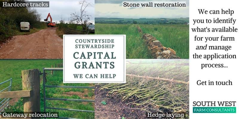 Countryside Stewardship Capital Grants