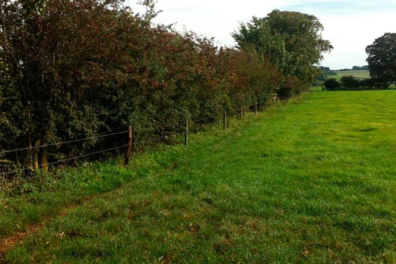 Countryside Stewardship fencing