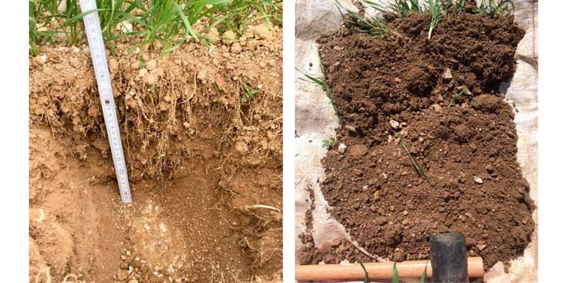 Soil testing at Hemsworth Farm