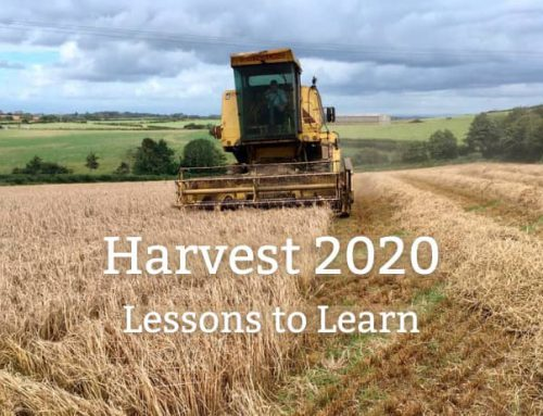 Harvest 2020: Lessons to learn