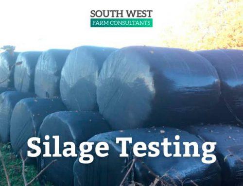 Silage testing 2020