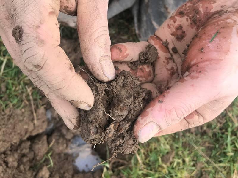 Soil Scanning soil analysis