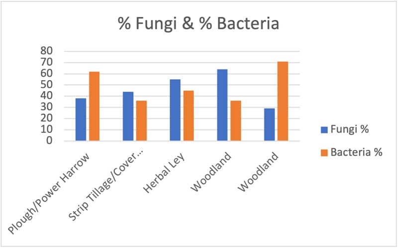 Fungi and bacteria test results