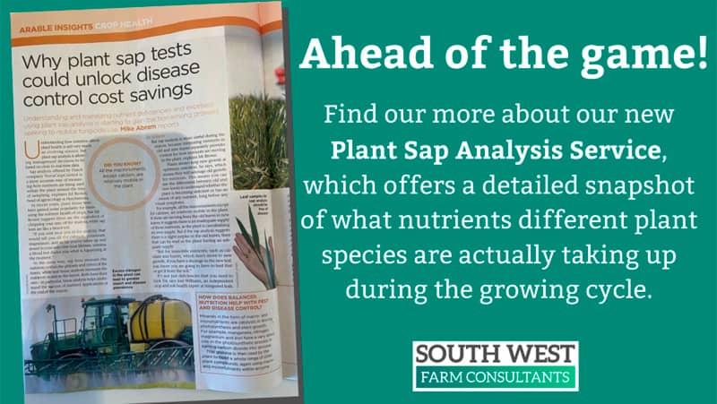 Plant sap analysis service