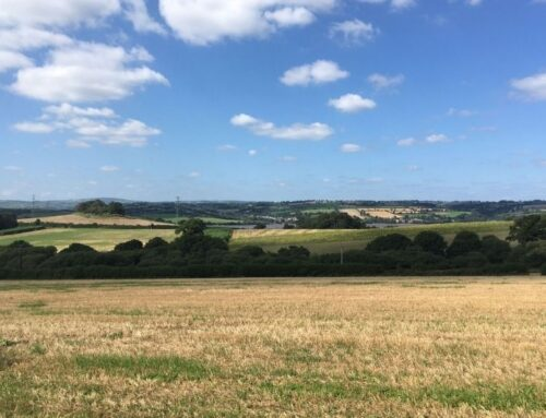 Farming in Protected Landscapes: New Funding Available
