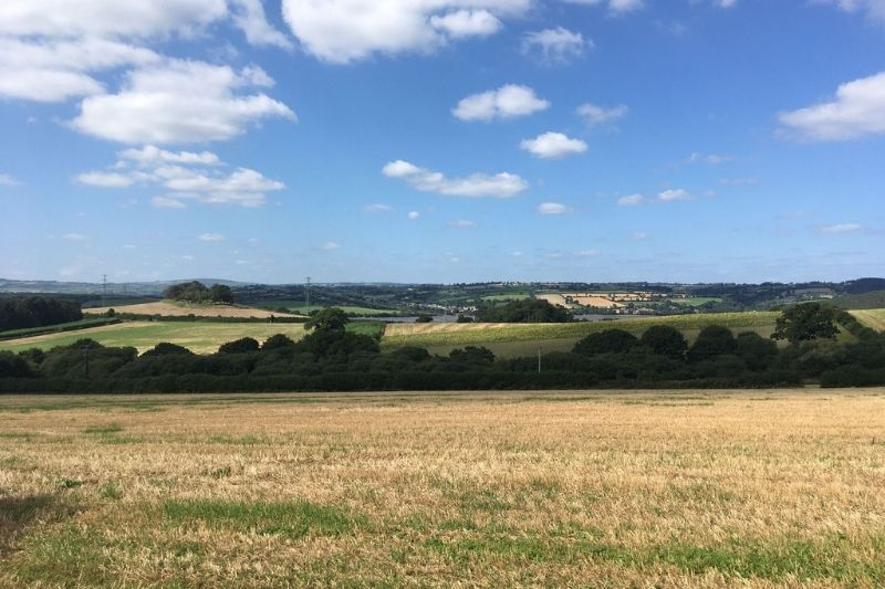 Landscape view of farm field in the Tamar Valley